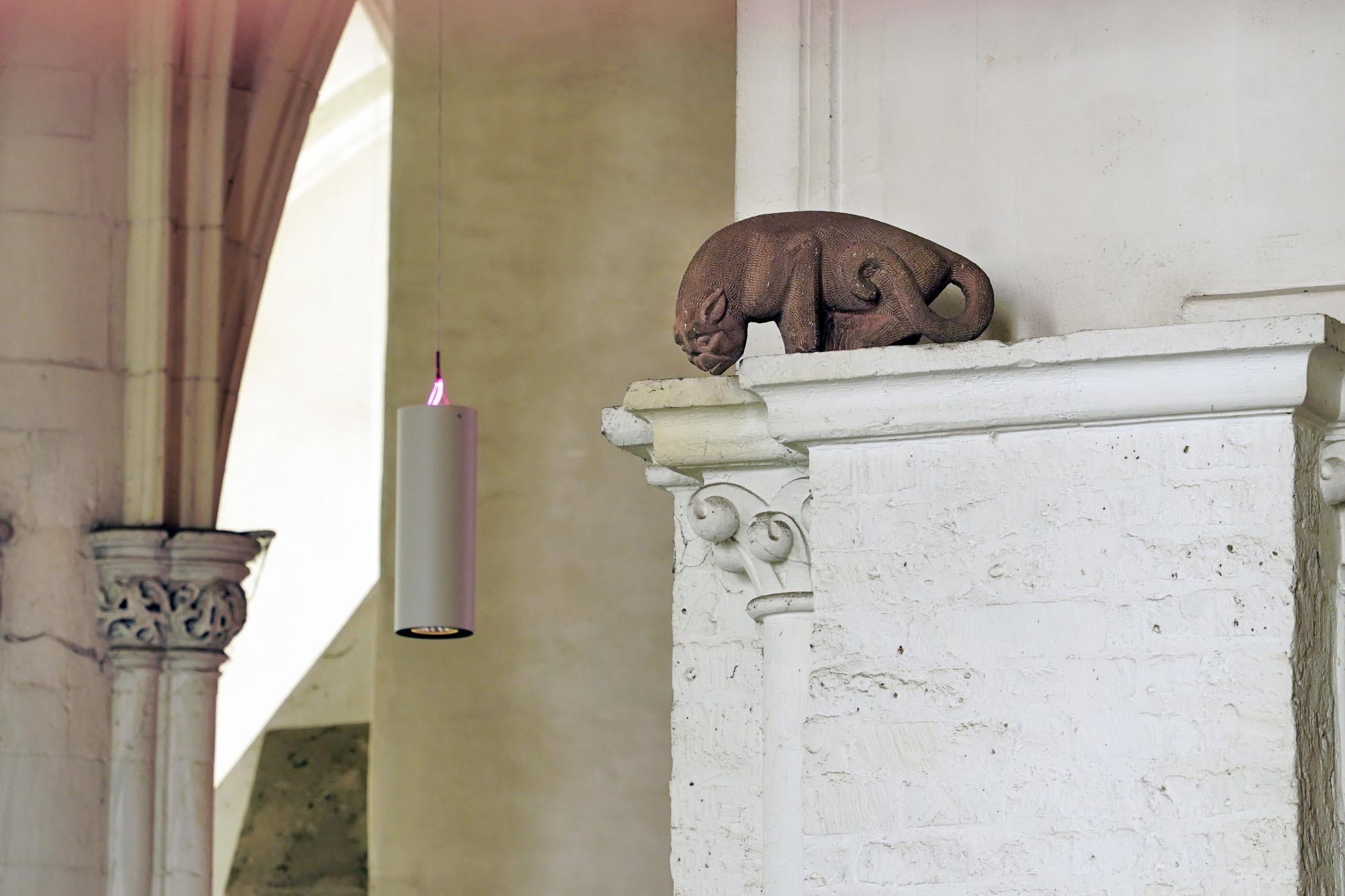 De Arnhemse kat in de Nijmeegse Stevenskerk